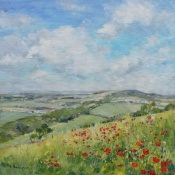 Poppies on Culver Down  Isle of Wight painting